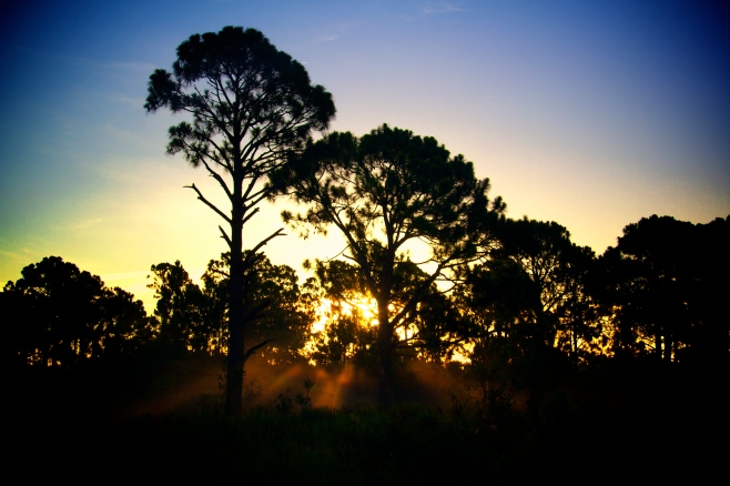 Sunrise in Charlotte County Park